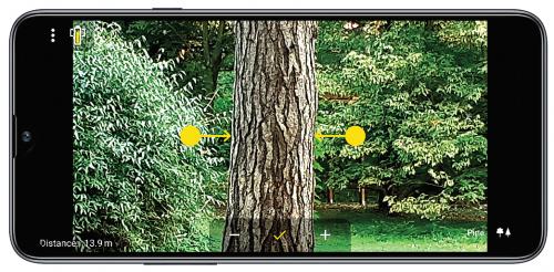 MobileForester_diameter_átlalás_diametro albero_2