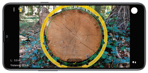 MobileForester_köbözés_timber_log_volume_tronco_2