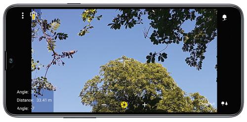 MobileForester_tree_famagasság_ height_altezza_albero_2
